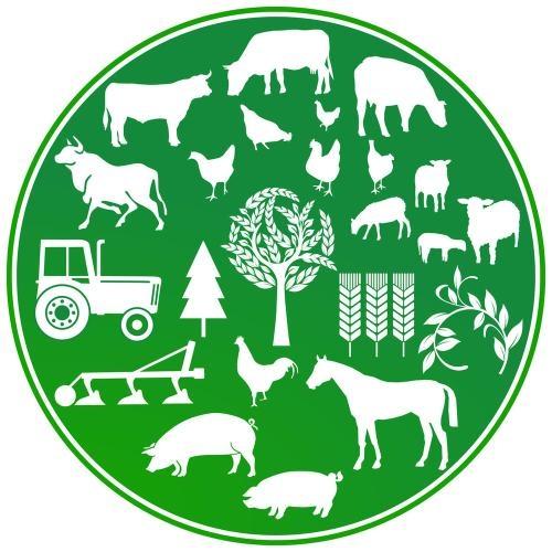 自然资源部和生态环境部评估生态保护红线:确保面积不减、功能不降、性质不改