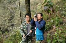 24林业因子分析调查分析
