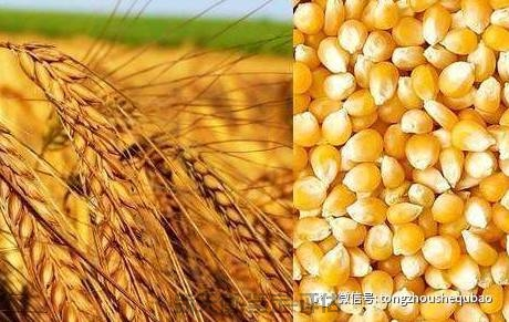 农业资源资产损害鉴定评估
