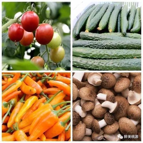 农作物农产品农资核查价格评估