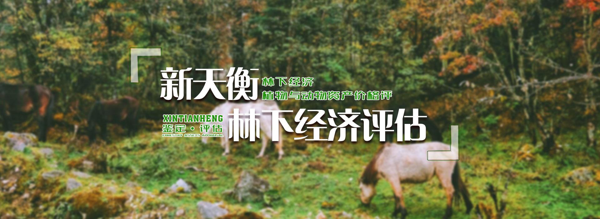 林下经济作物评估
